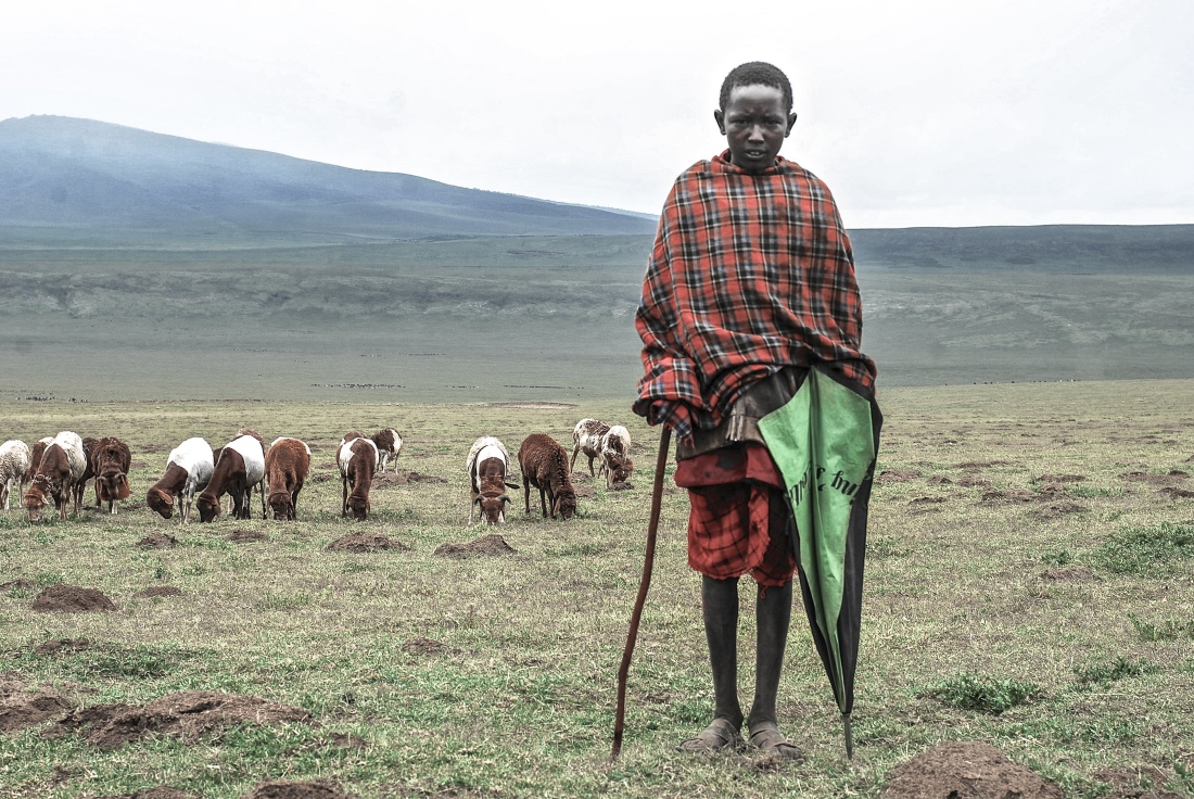 embulbul-depression-herder