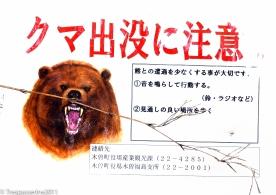 the-bear-necessities