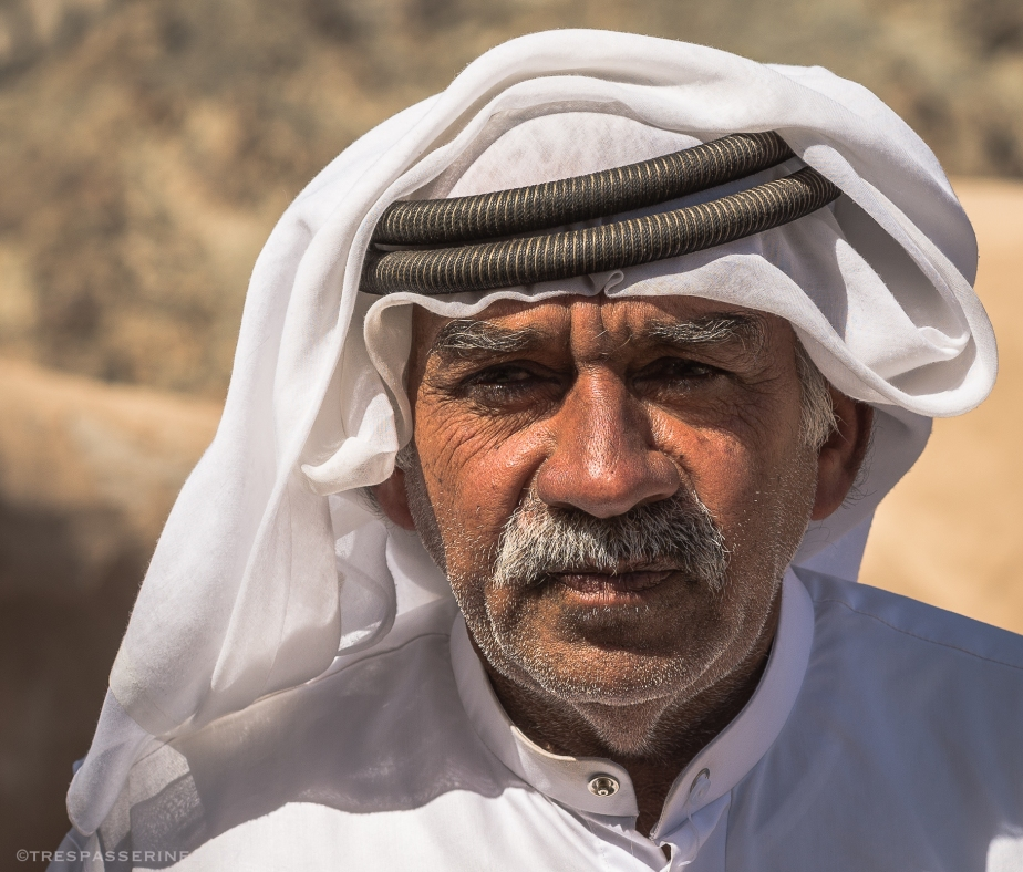 Portrait of the Arab as an Old Man
